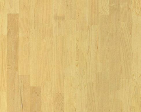 Pavimenti in legno di Acero Europeo